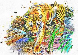 Tiger Quiz - Teycro Marketing