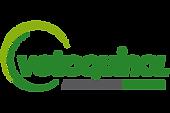 vtq logo.png