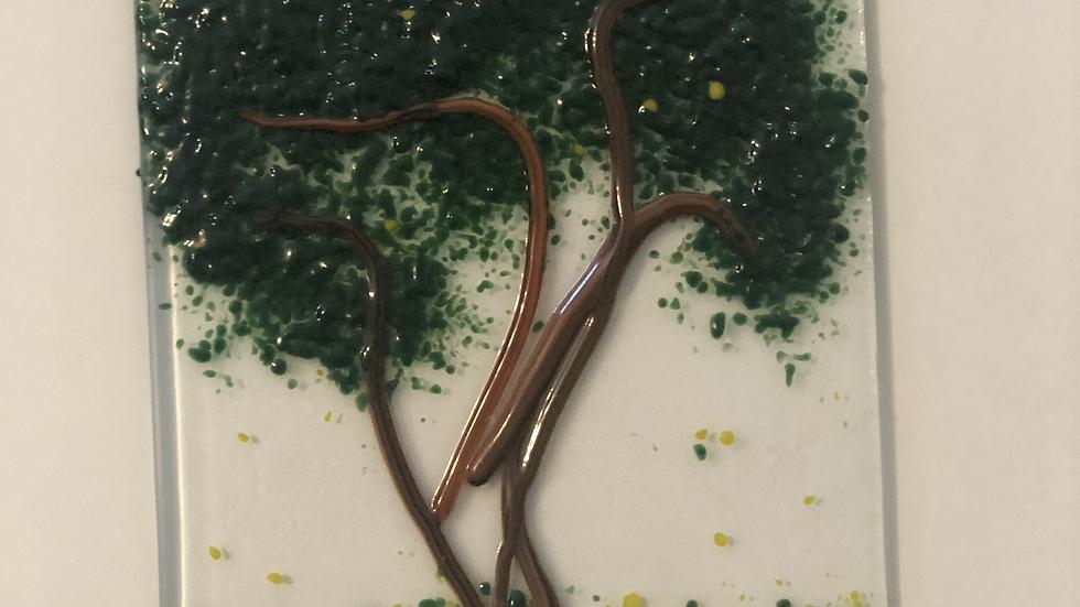 Sqiggly Tree