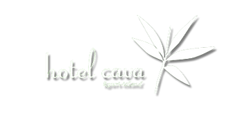 cava_logo_edited.png