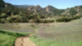 Malibu Creek State Park.jpg