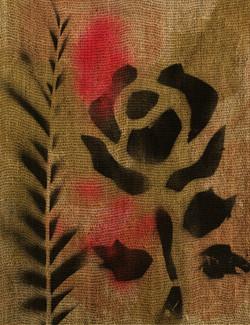 Oil On Plants (Rose 0132)