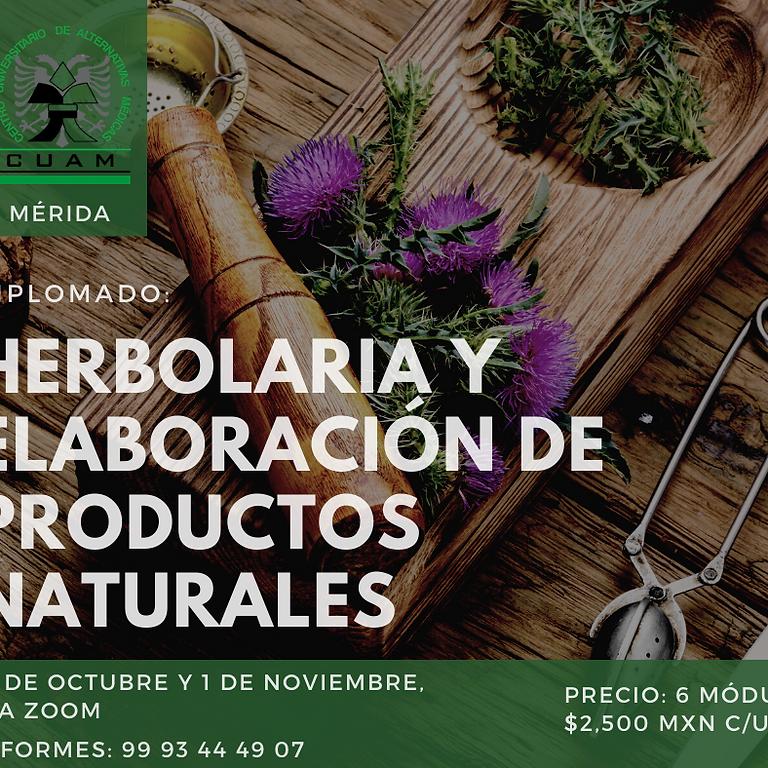 Herbolaria y Elaboración de Productos Naturales