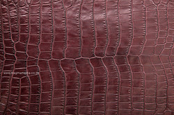 leather-(10)