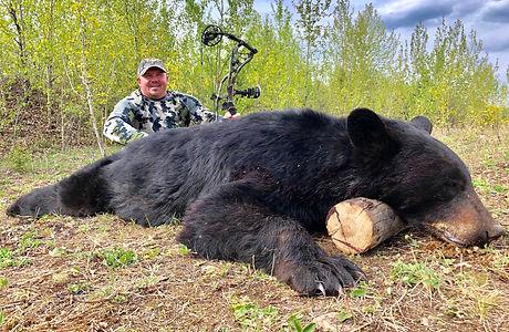 tony hawk bear 2019.JPG