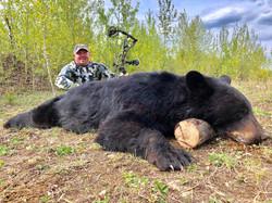 tony hawk bear 2019