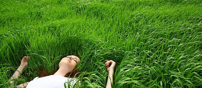 Girl Lying in Grass 2015-10-5-16:6:51