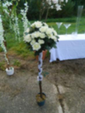 12 - Rose Trees White.JPG
