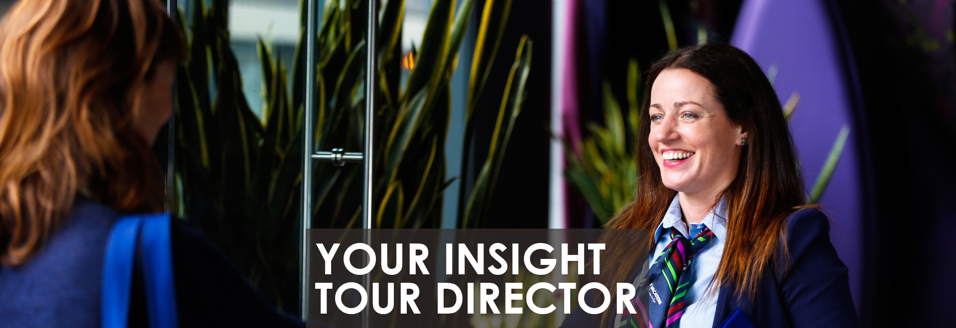 Your Insight Tour Director