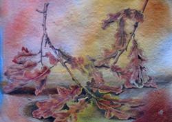 Arne, oak leaves