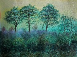 Arne, gorse and pines