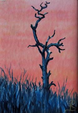 Dead tree at dawn