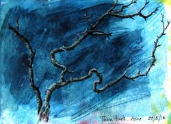 Arne, Thorn bush