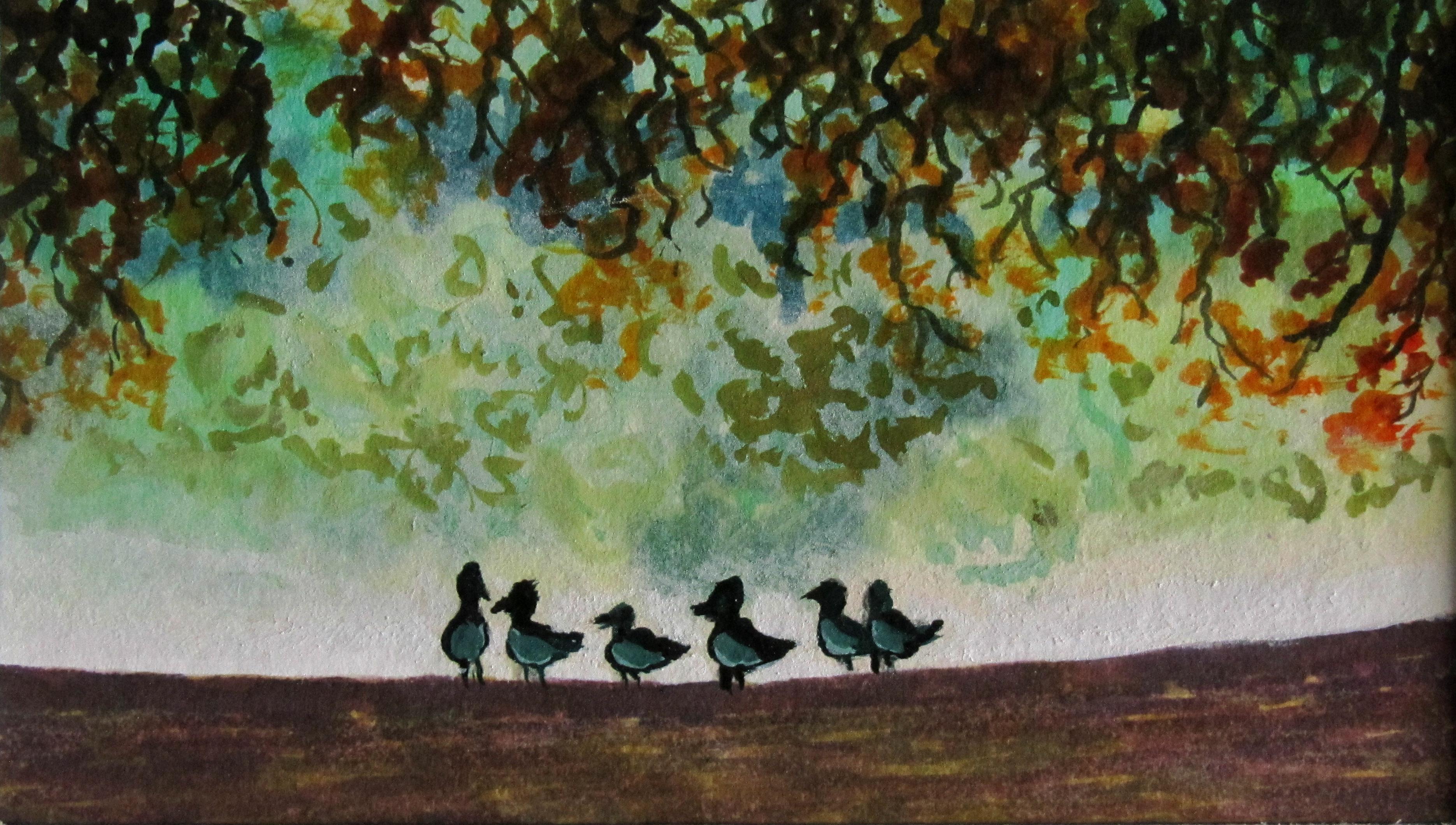 Ducks on Pittville Lake