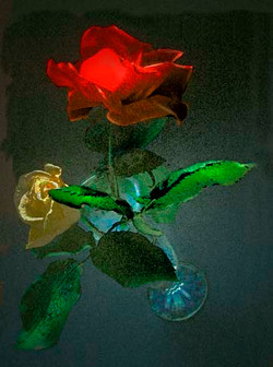 flowers_red_rose