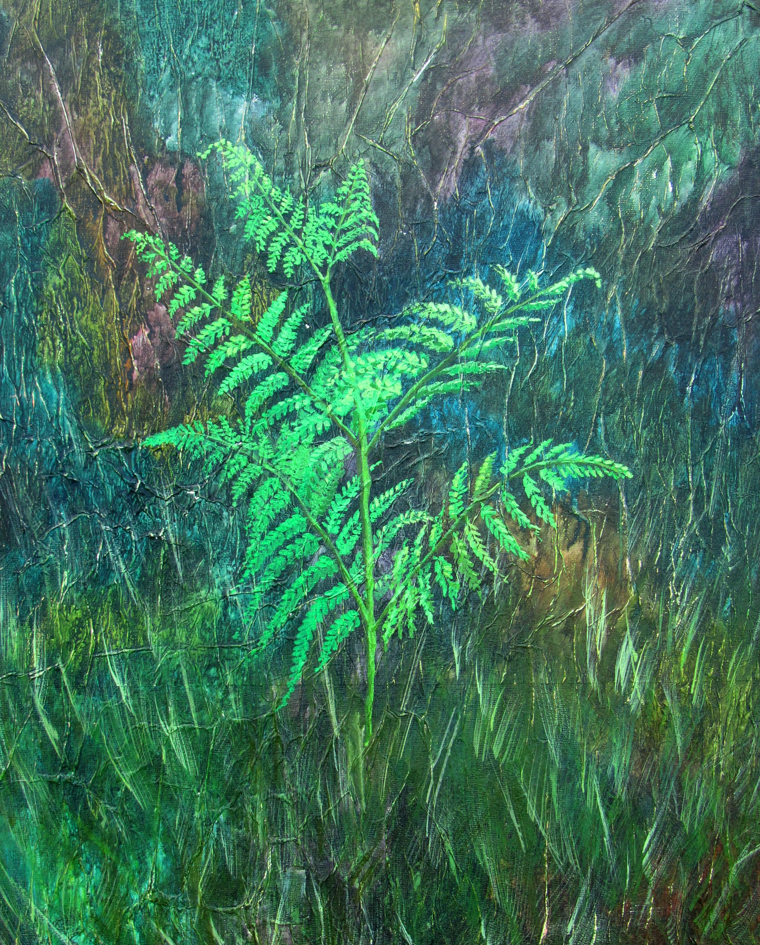 Arne, emerging fern