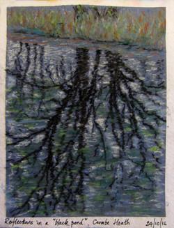 Arne pool reflection