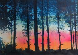 Wareham Forest sunset