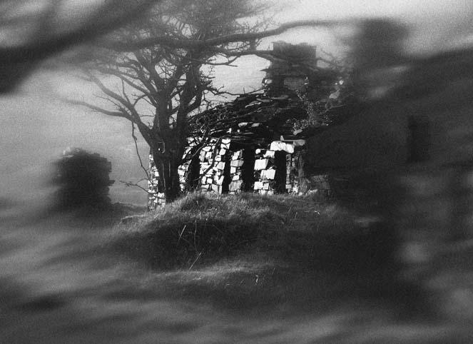 landscapes_cottage