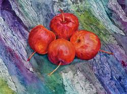 Still life crab apples