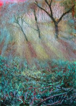 Arne, misty winter morning