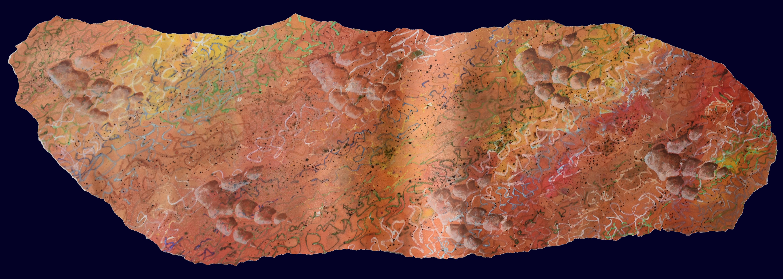 Fossil dinosaur footprints