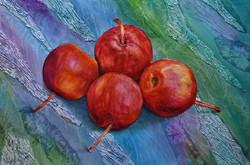 Still life crab apples, large