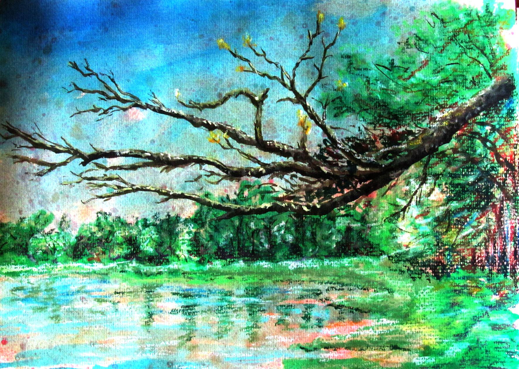Arne, fir branch