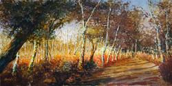 Arne, Shipstal path