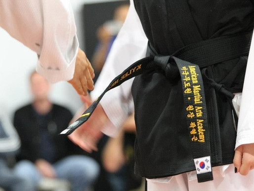 Craft of Teaching Martial Arts