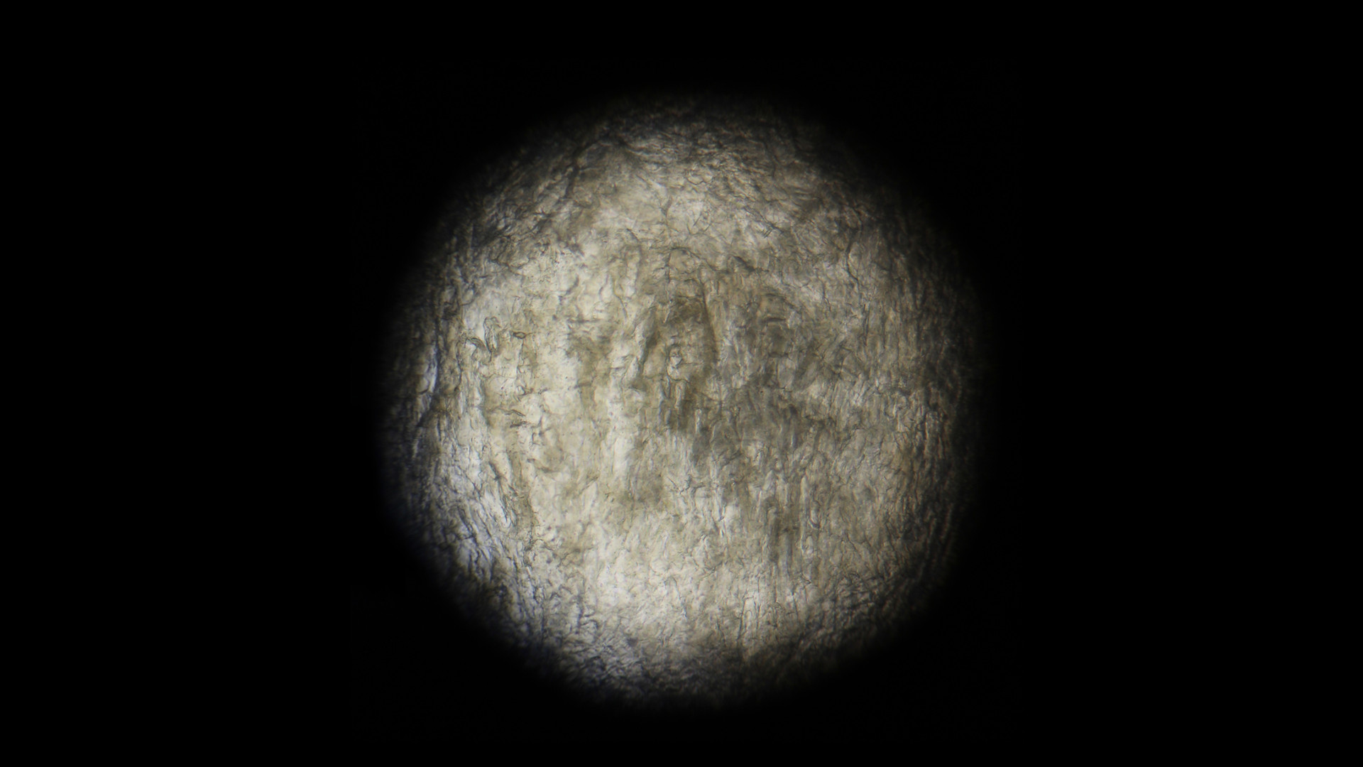 Over_the_Moon_#3,_2015,_photographie_num