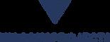Viscous_Logo_01.png