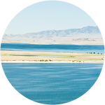 Water_Leasing_Icon-01-01.png