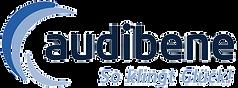 audibene__Logo_freigestellt.png