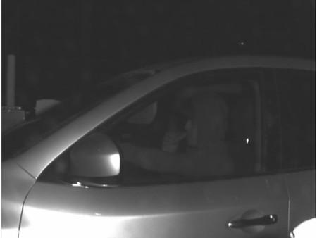 Person of Interest: Stolen vehicle