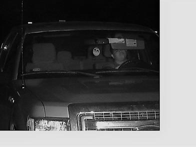 Auto Theft Suspect