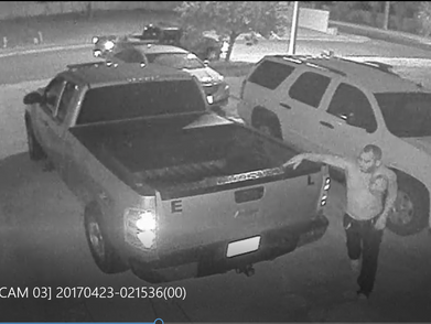 Burglary of a vehicle Suspect