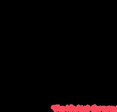 Logo S+sub l.png