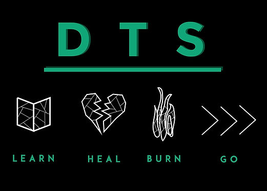 Website DTS.jpg