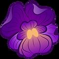 African Violet.png