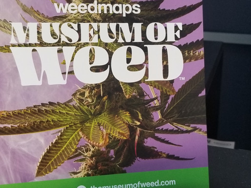 L.A Adventures - Inside the Museum of Weed