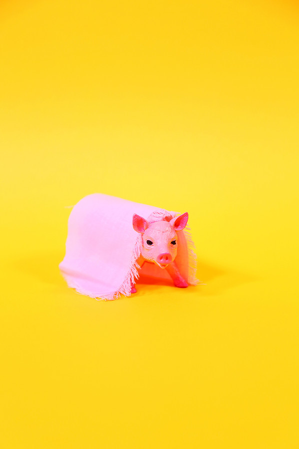 'Pig's In Blankets' By Jay Harris, Alice