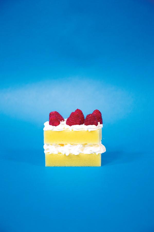 'Sponge Cake' by Jay Harris, Alice Harri