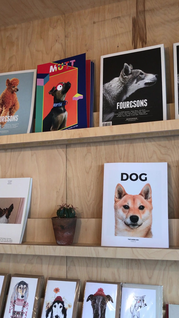 Mutt Magazine Stocked in Fetch & Follow.