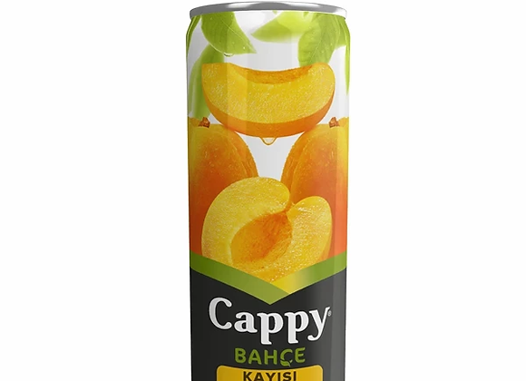 CAPPY KAYISI NEKTARİ 330 ML
