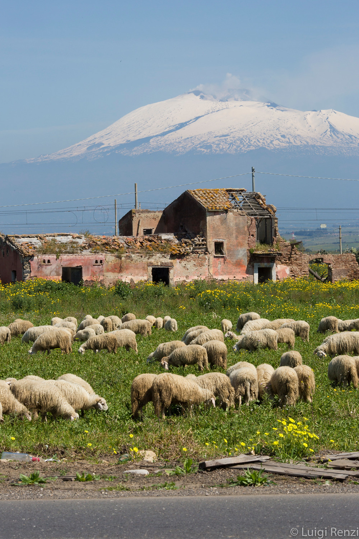 Nucleika, Volcano Etna Catania Sicily