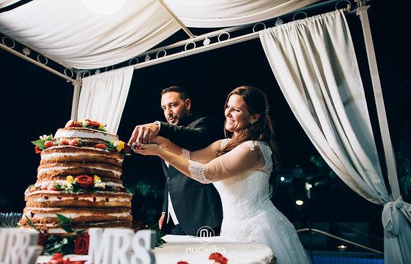 nucleika wedding cake