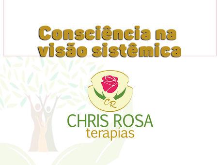 Consciência na Visão Sistêmica