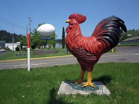 The World´s Largest Egg Winlock 2009