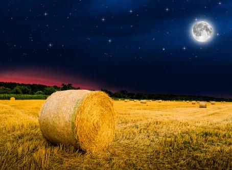 Full Harvest Moon October 1